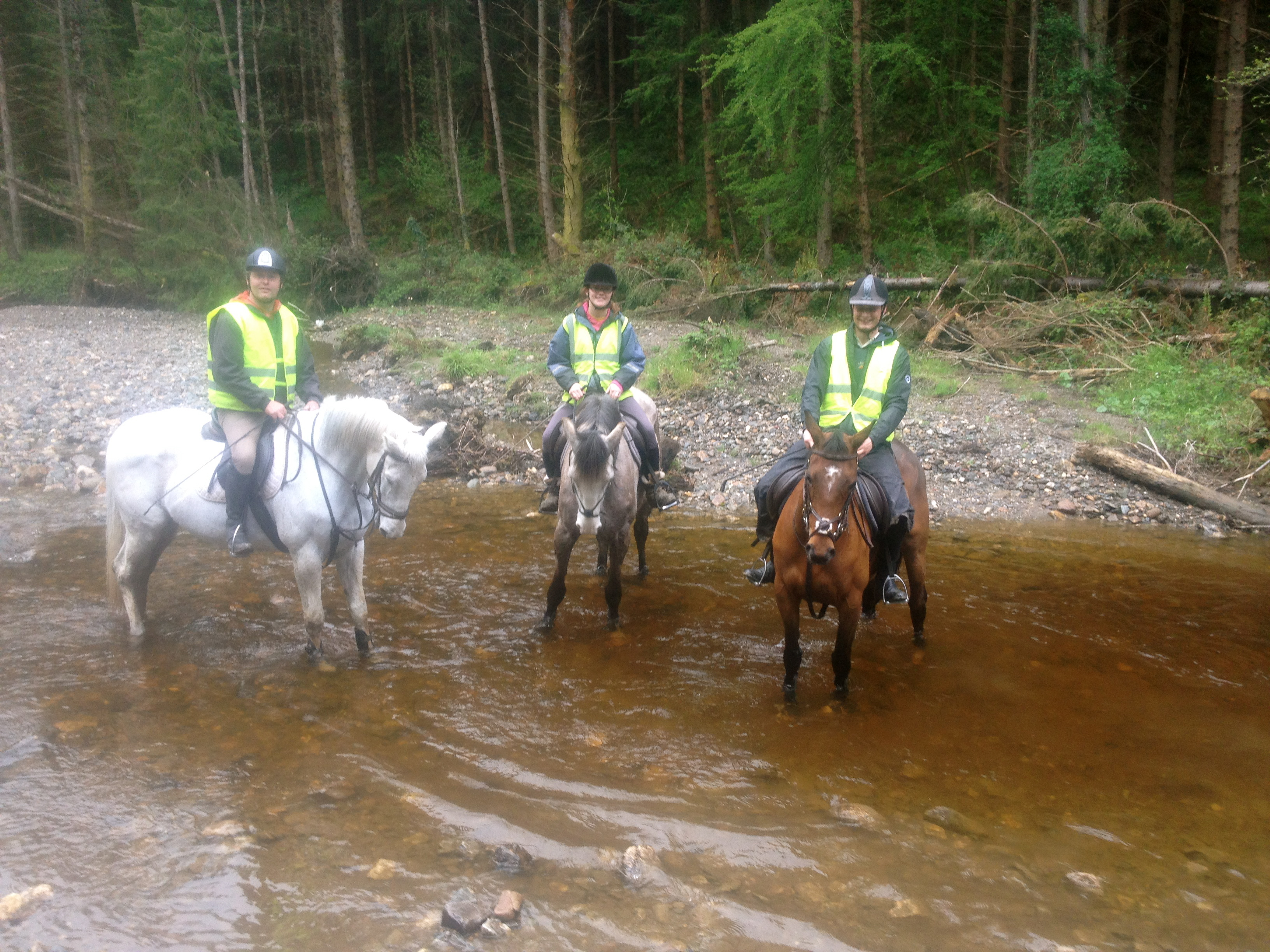 Horse Riding Guided Tours Wicklow