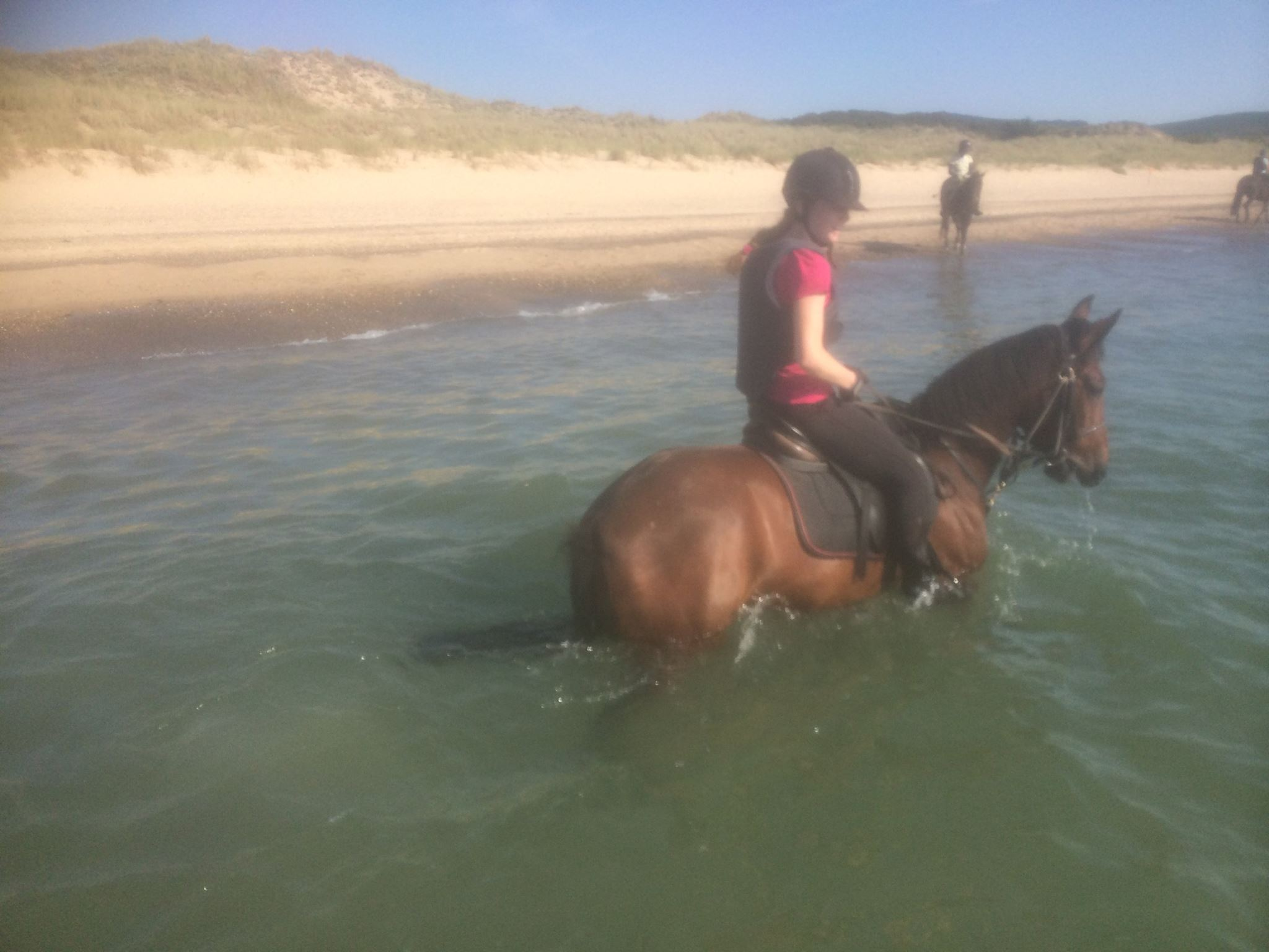 Beach Sea Horse Riding Tours