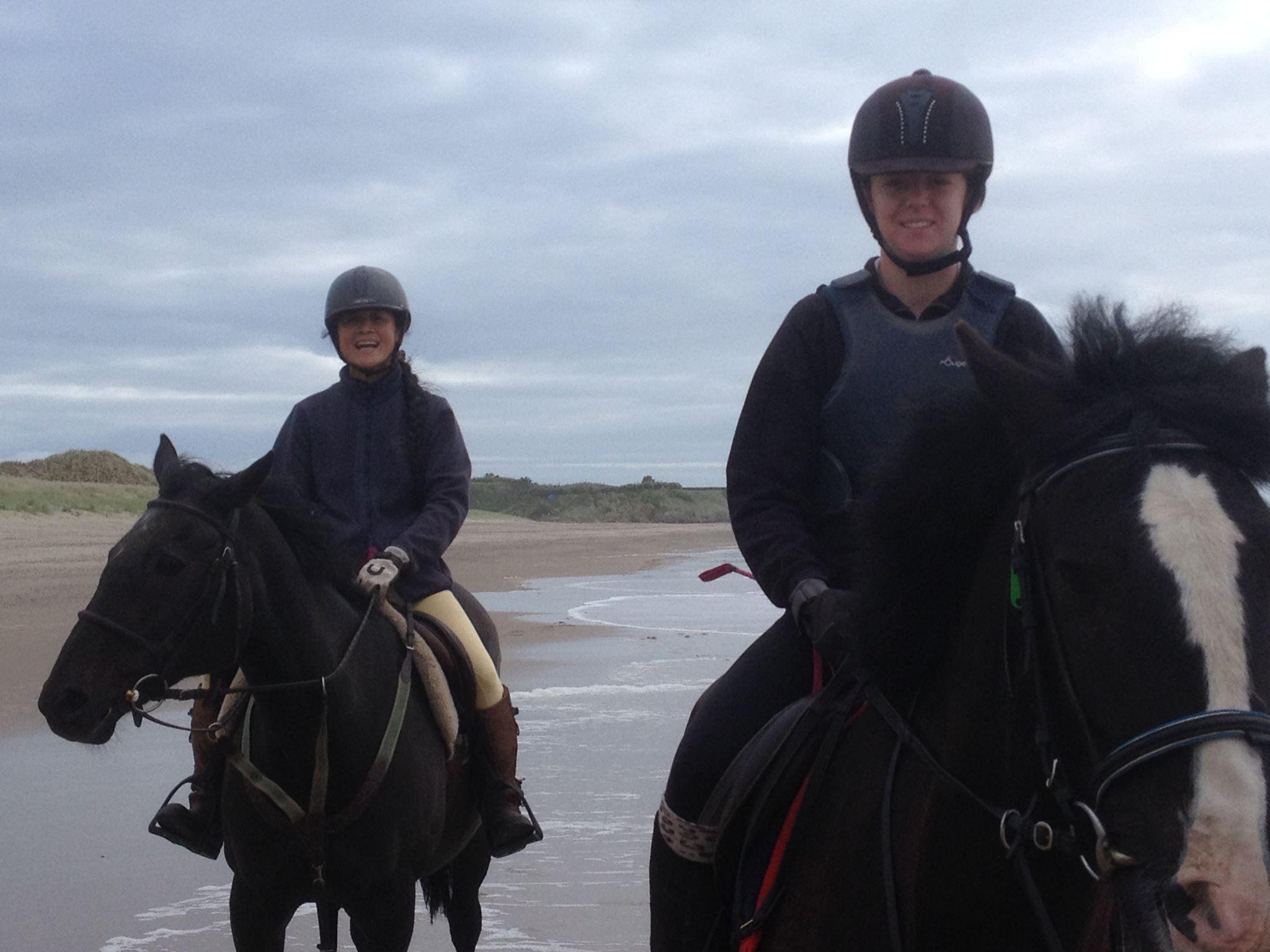 Horse Riding Tours Beach