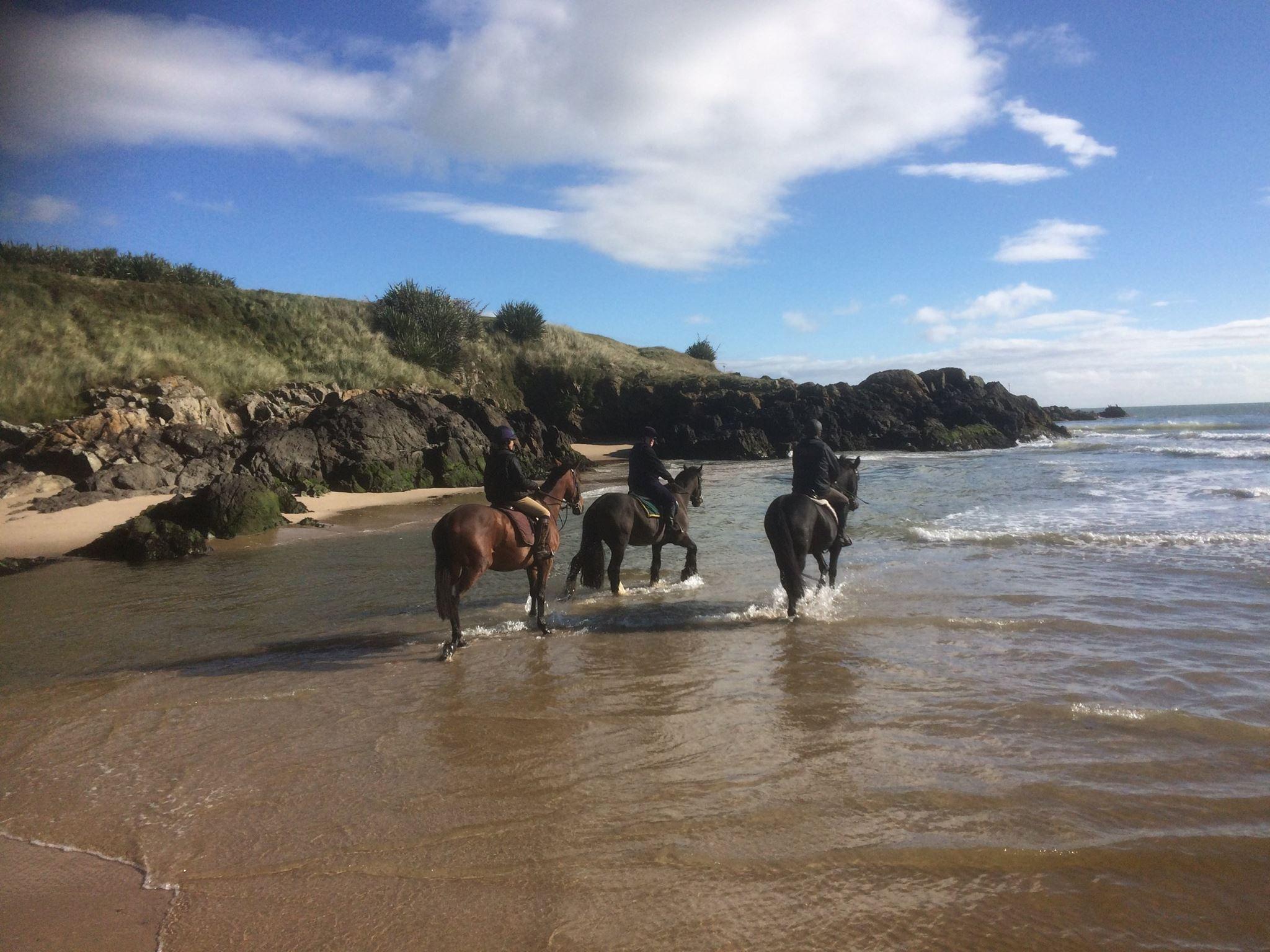 beach horse riding trek