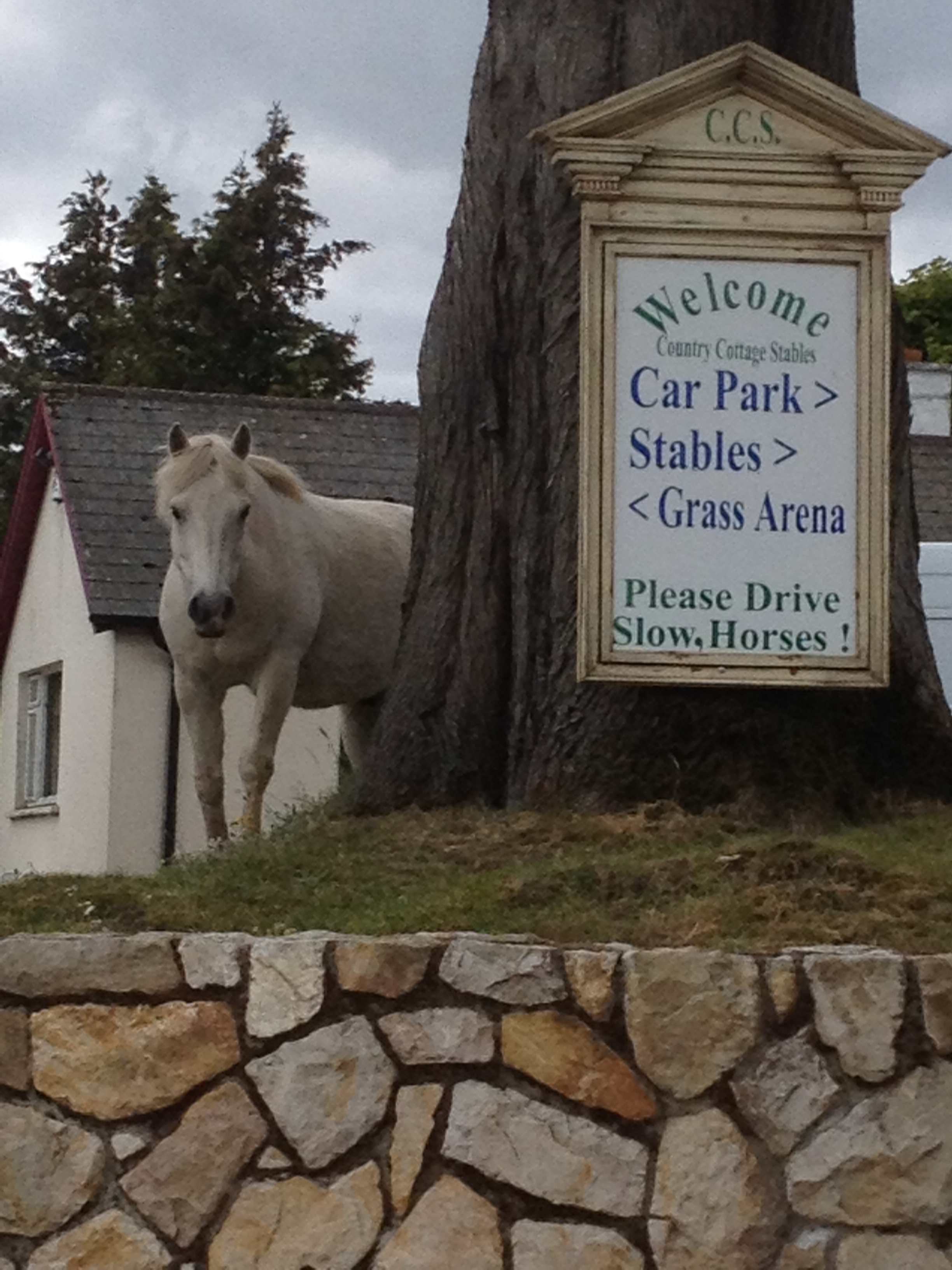 Country Cottage Horse Stables Wicklow