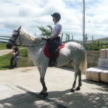 horse livery smith
