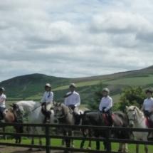 Group Horse trek