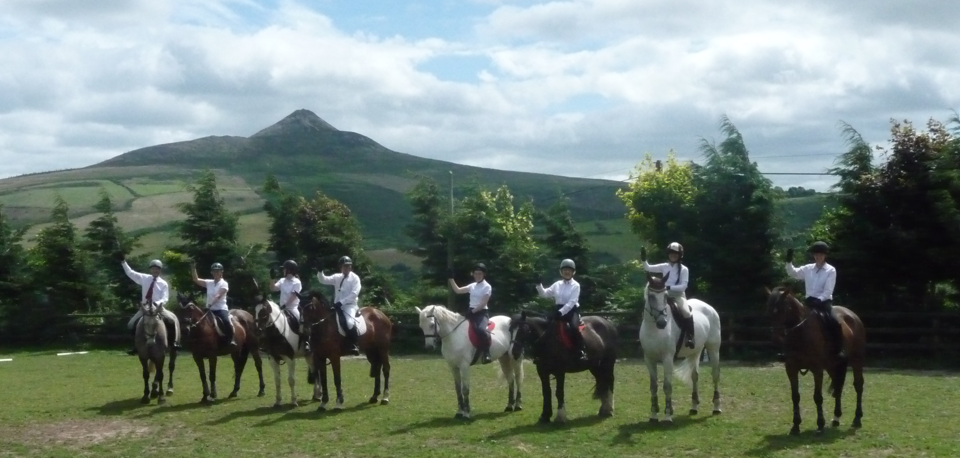 Group Horse lessons