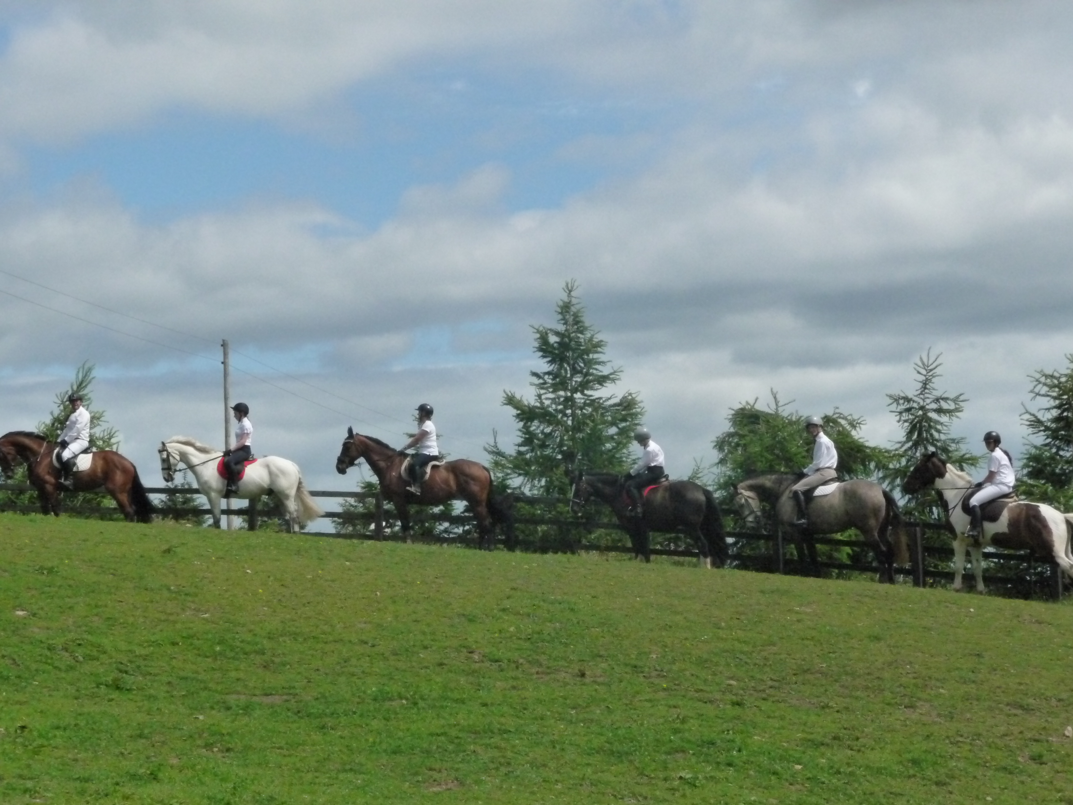 Horse guided tours