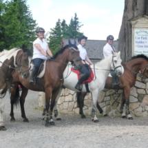 Group horse back trek