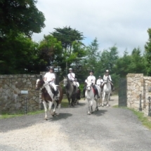 Group Lessons Horse Riding