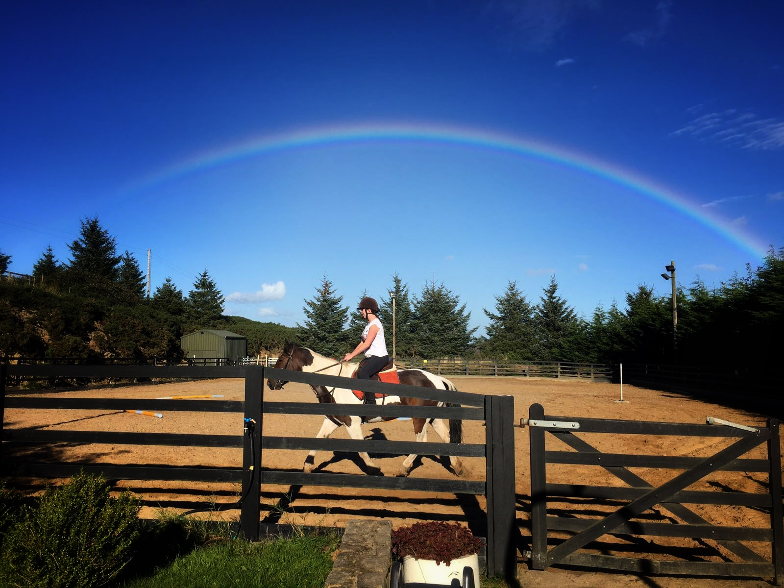 Horse Riding Lessons Wicklow