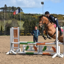 Show jumping preparation lessons