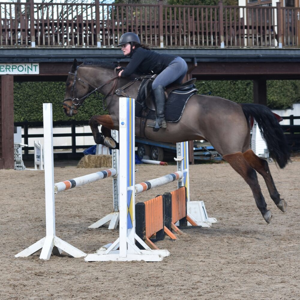 Showjumping pre-competition lessons